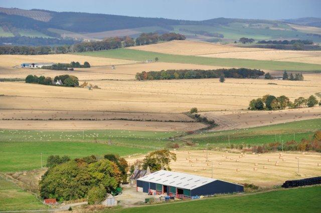 Farmland-D1903.jpg