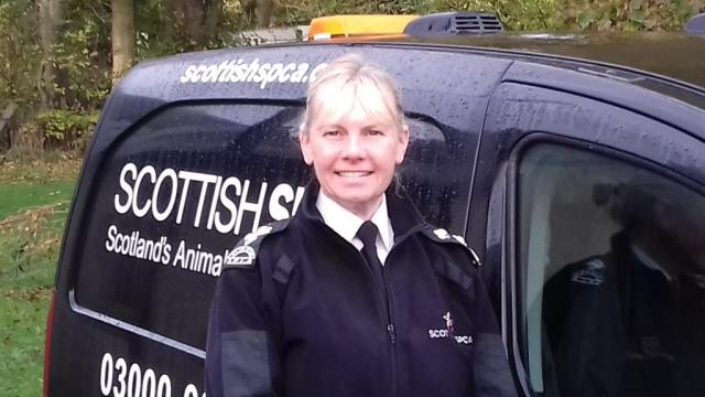Gill MacGregor, Senior Inspector from the Scottish SPCA, out on patrol.