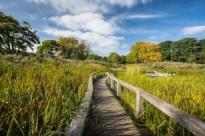 Beveridge Park, Kirkcaldy. © Ian McCracken