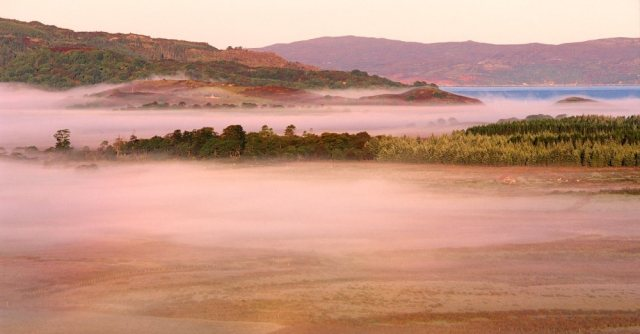 Misty morning over the raised bog at Moine Mhor NNR. © Lorne Gill/SNH