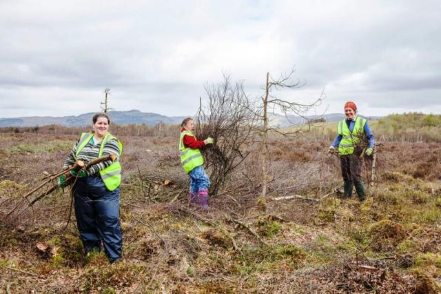 Clearing Birch, Wester Moss. © David Palmar www.photoscot.co.uk