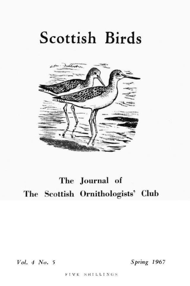 Cover of the Scottish Ornithologists Club magazine 1967.
