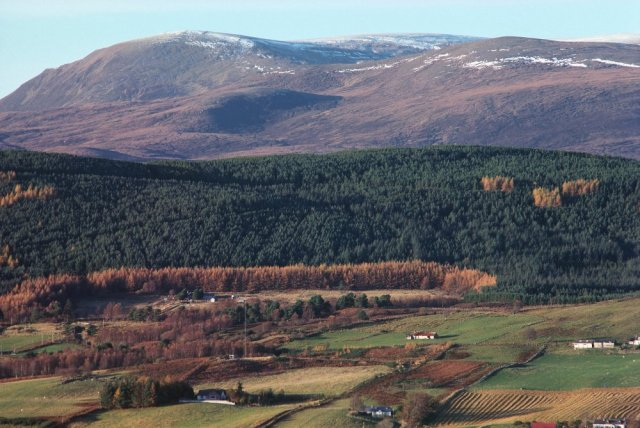 Ben Wyvis from the south. © Peter Wakely/SNH