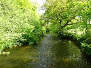 The Tay at Dunkeld vs River Fowey, my local river.