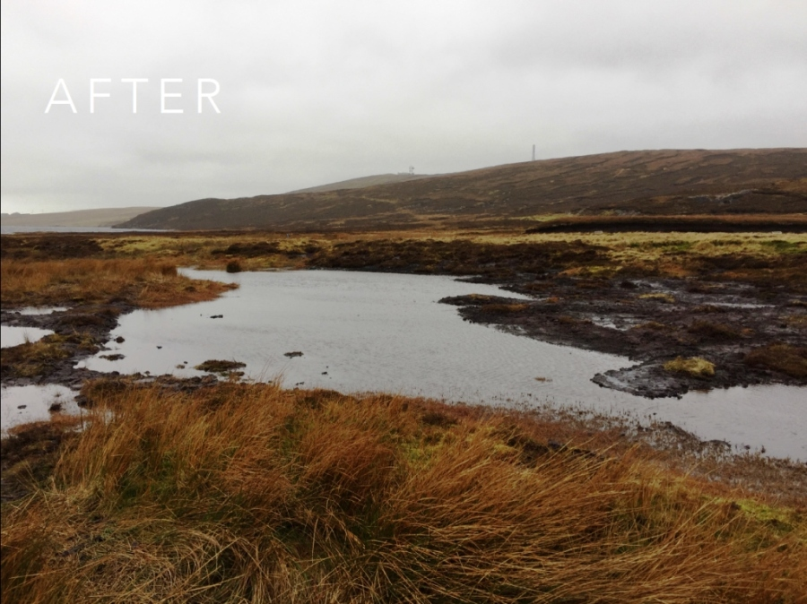 Sandy Loch Peatland ACTION restoration project: after work completed. © Scottish Water - Sustainable Land Management Team
