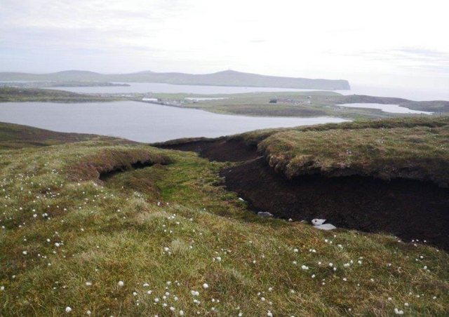 Land around Sandy Loch in Shetland is typical rough grazing, modified over decades, possibly centuries, from peat cutting for domestic fuel and pasture improvement for livestock.  ©Scottish Water - Sustainable Land Management team