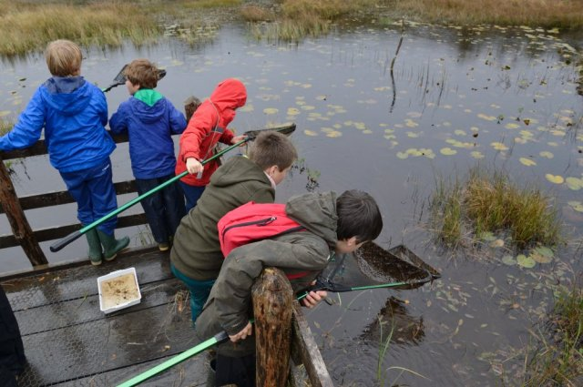 Pupils from Tayvallich Primary School pond dipping at Taynish National Nature Reserve. ©Lorne Gill/SNH