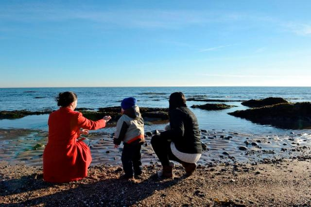 Family Fresh Air Club outing to Carnoustie beach, November 2016. ©Lorne Gill/SNH