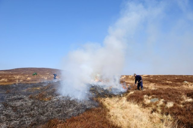 Beating out flames whilst heather burning on Langholm moor. ©Lorne Gill/SNH