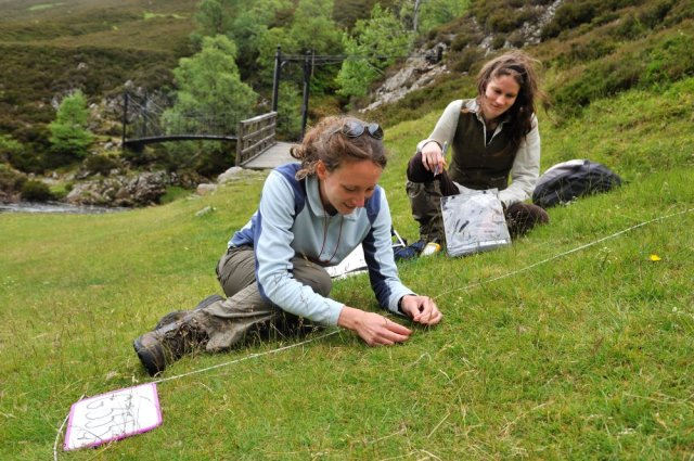 Phd research student and her field assistant surveying a quadrat in Glen Tilt. ©Lorne Gill/SNH