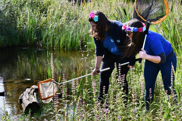 Pond Dipping Photo Gregory Vaux
