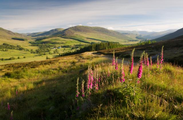 Cateran Trail - Kirkton of Glenisla - © Mike Bell
