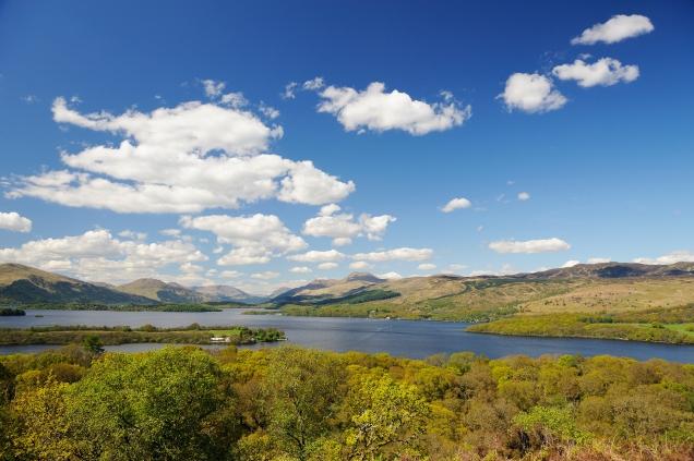 Inchcailloch NNR, Loch Lomond.©Lorne Gill/SNH