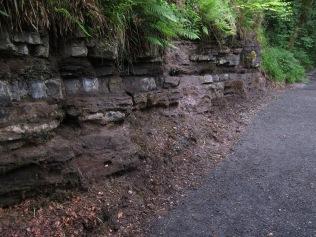 Lynn Glen Trail after removal of vegetation by volunteers ©Lauren Lochrie, TCV