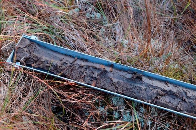Peat core taken from the blanket bogs above Cromar, Loch Lomond ©Lorne Gill/SNH