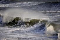 Wave-D3431