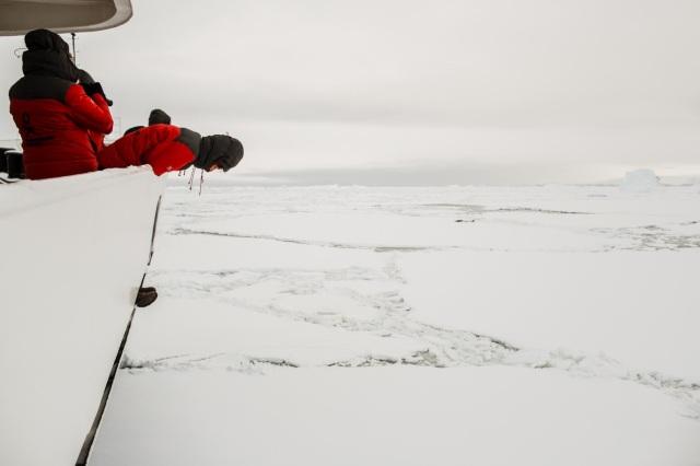 HWade - ship passing thru sea ice - credit Oli Sansom