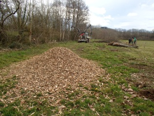 Wood chips made from farm hedges