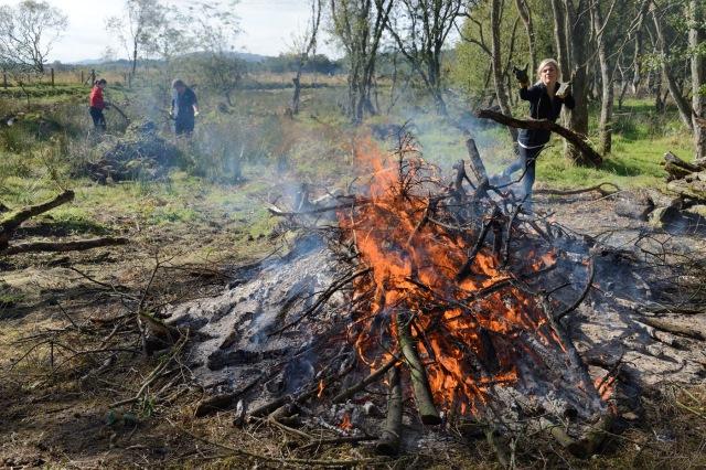 Burning Brash - credit Lorne Gill