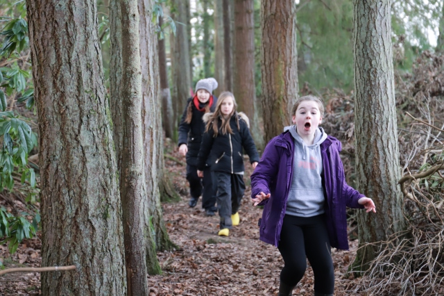 SNH staff helped develop a plan of suitable activities for pupils