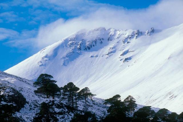 Beinn Eighe and pinewoods in winter © John MacPhersonSNH