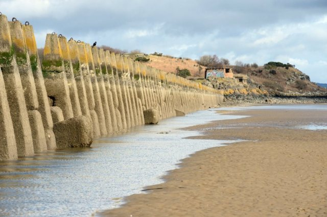 Anti tank blocks at Cramond on the Firth of Forth. March 2018. ©Lorne Gill/SNH