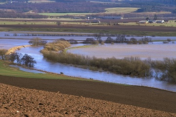 Flooding on the River Earn. Tayside and Cackmannanshire Area. ©Lorne Gill/SNH THIS IMAGE IS COPYRIGHT SNH AND PERMISSION MUST BE OBTAINED PRIOR TO ANY USAGE. Tel. 01738 444177 or WWW.snh.org.uk