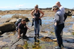 Finding fossils at Carsaig ©Kate Mennie