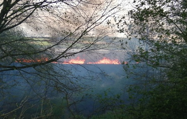 5. The fire takes root ©Vicky Turnbull RSPB Scotland