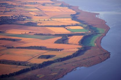 Aerial view of the River Tay reedbeds ©P&A Macdonald