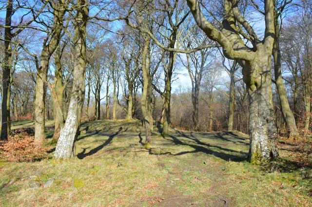 Lorg Ghlaschu - Gaelic blog post - Cathkin Braes 2