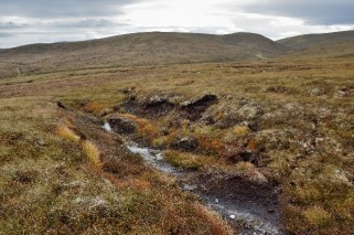 Bogs can be damaged by water scarcity ©NatureScot